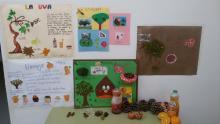 El Otoño. Alumnos/as 5 años Ed. Infantil